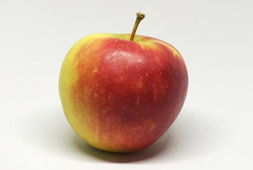 Apfelsorte Elstar von Elbe-Obst aus dem Alten Land