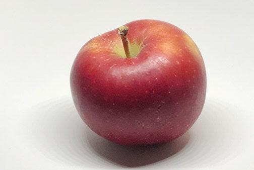 Apfelsorte Gala von Elbe-Obst aus dem Alten Land