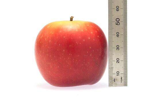 Apfelsorte Rockit von Elbe-Obst aus dem Alten Land