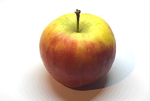 Apfelsorte Topaz von Elbe-Obst aus dem Alten Land