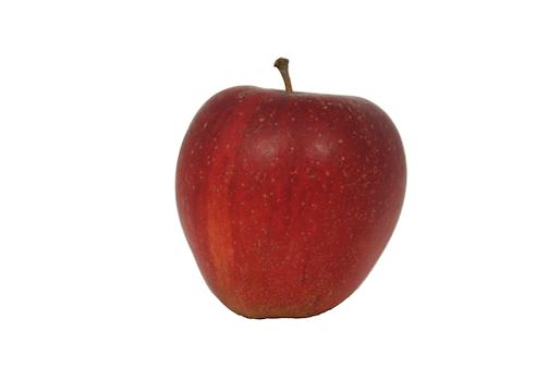 Apfelsorte Wellant von Elbe-Obst aus dem Alten Land