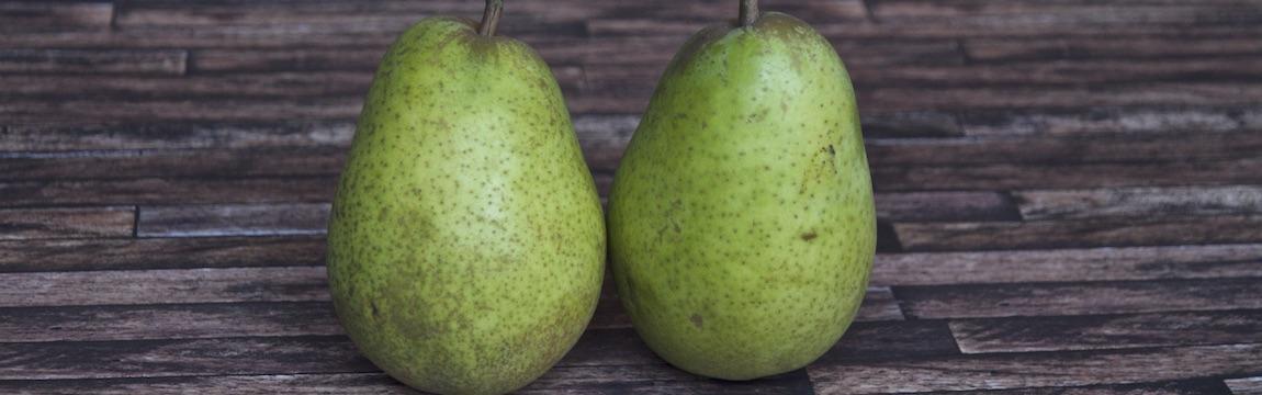Birnensorte Alexander Lucas von Elbe-Obst aus dem Alten Land