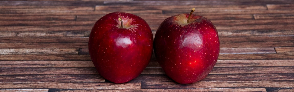Apfelsorte Red Prince von Elbe-Obst aus dem Alten Land