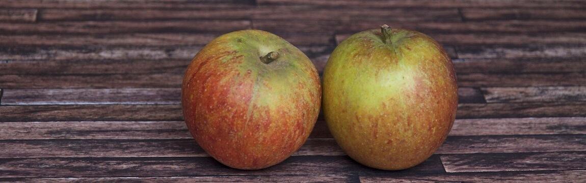 Apfelsorte Cox Orange von Elbe-Obst aus dem Alten Land