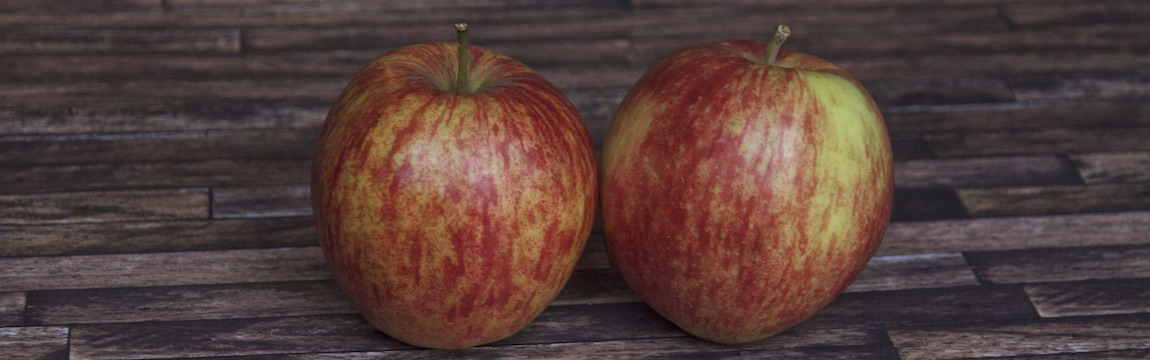 Apfelsorte Jonagored von Elbe-Obst aus dem Alten Land