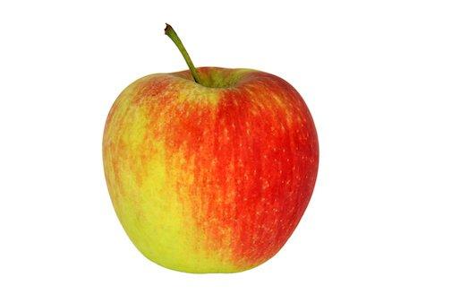 Apfelsorte Roter Grafensteiner von Elbe-Obst aus dem Alten Land