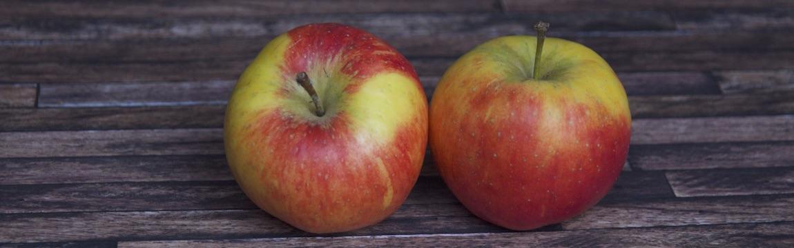 Apfelsorte Tapaz von Elbe-Obst aus dem Alten Land