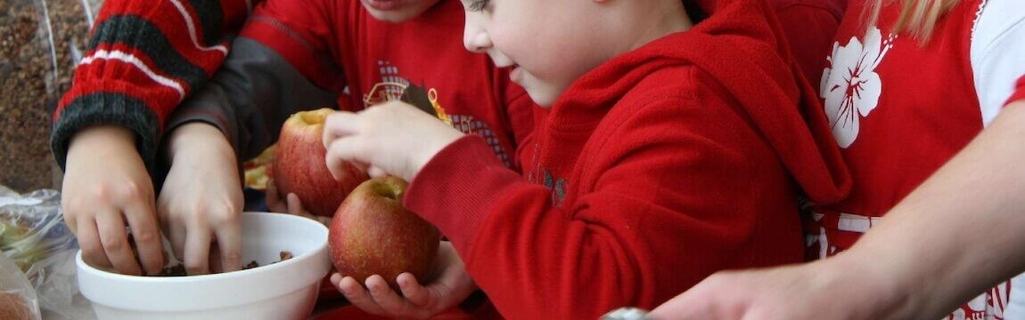 Küche in Kinderhand mit Äpfeln von Elbe-Obst