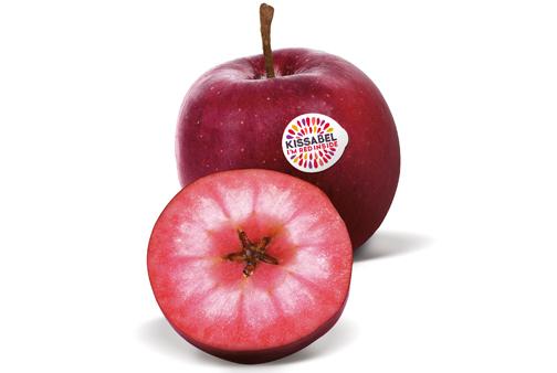 Kissabel - eine rotfleischige Apfelsorte