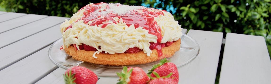 Rezept Spagettikuchen mit frischen Erdbeeren Elbe-Obst